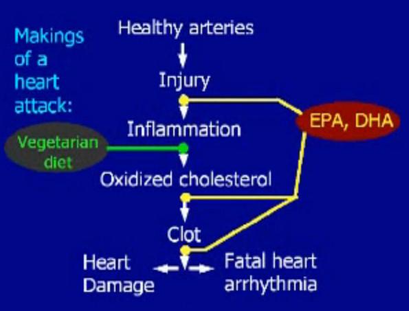 נזק לכלי דם ושלבי התערבות
