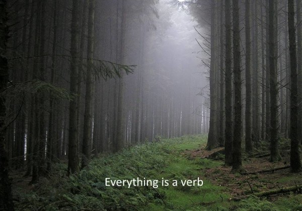 Everything is a verb